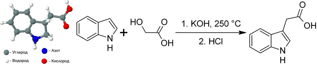 Структурная формула и схема синтеза гетероауксина