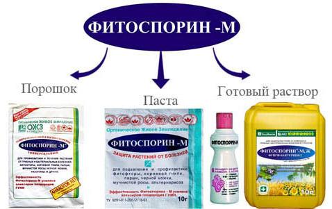 продажные препараты Фитоспорина