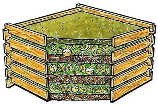 Как правильно выкладывать пищевые отходы для компостирования