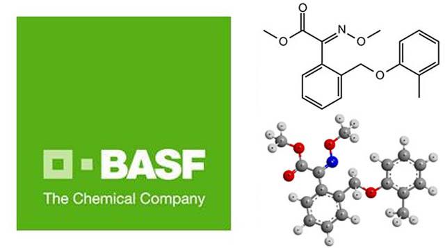 Логотип производителя оригинального фунгицида Строби и химическая формула его действующего вещества