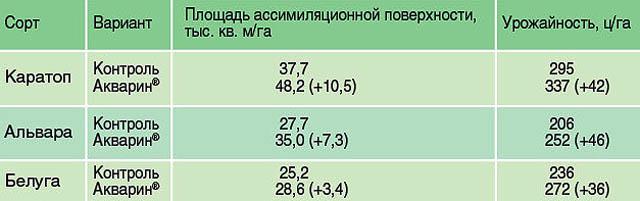 Результаты подкормки картофеля удобрением Акварин.