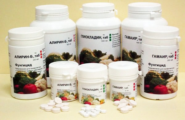 Биопрепараты - партнеры: Алирин, Гамаир, Глиокладин