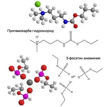 Формулы веществ, составляющих фунгицид Превикур Энерджи