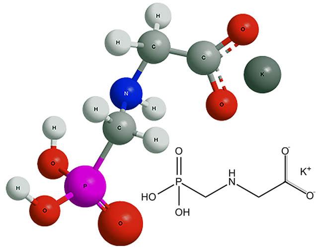 Химическая формула калиевого глифосата