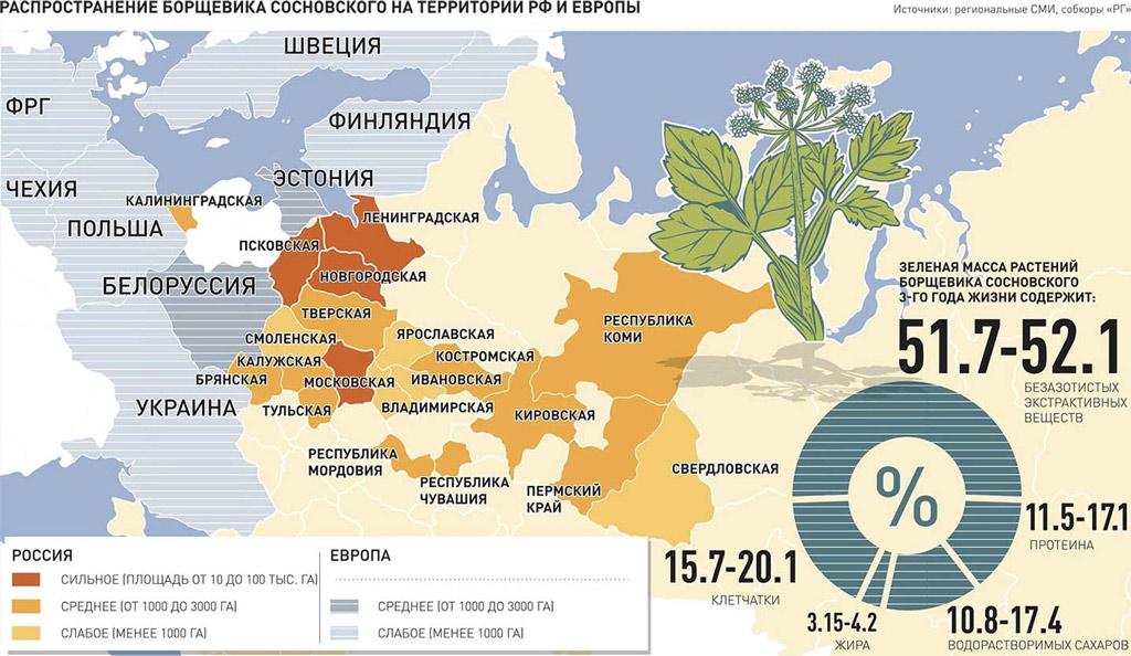 Распространение борщевика Сосновского в РФ и Европе