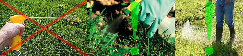 Особенности обработки растений гербицидом Лонтрел
