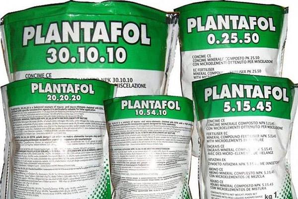 Разновидности удобрения Плантафол