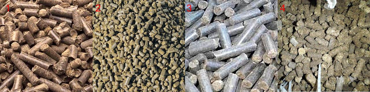 Качественные (поз. 1-3) и сомнительные (поз. 4) гранулы куриного помета