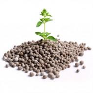 Все о минеральных удобрениях: Селитра, Карбамид, Нитроаммофоска, Суперфосфат аммонизированный