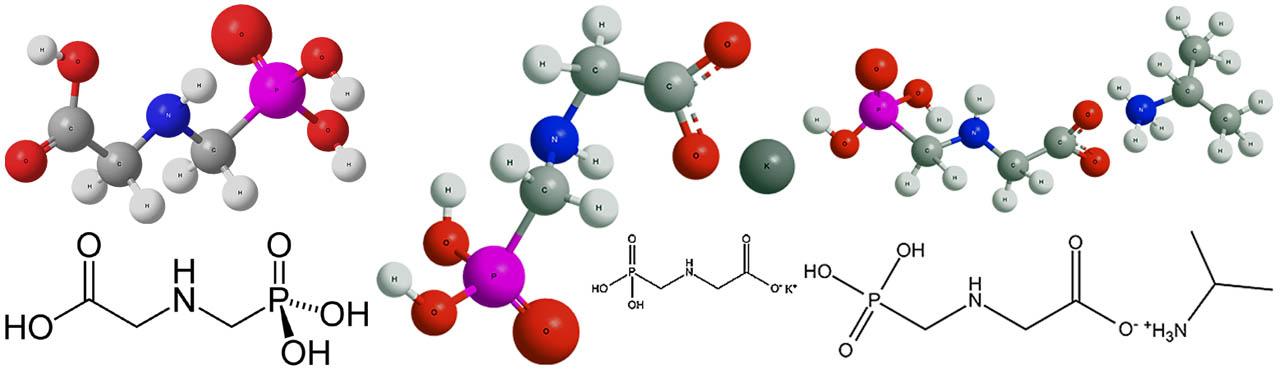 Химическая формула глифосата и действующих веществ СЗР на его основе