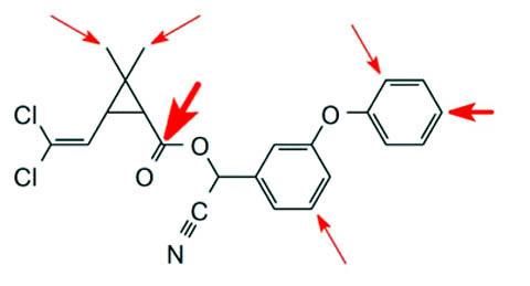 Механизм защиты вредителей от циперметрина на молекулярном уровне