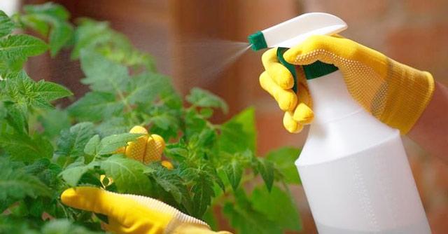 Защитные перчатки для работы с зеленым мылом в условиях повышенной температуры и влажности