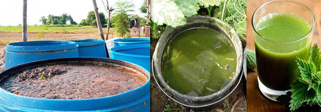 Органические удобрения, полученные анаэробной и аэробной ферментацией растительных отходов