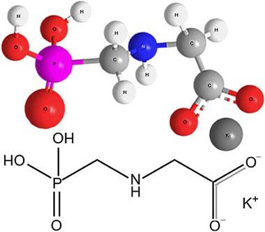 Химическая формула глифосата калия и строение его молекулы