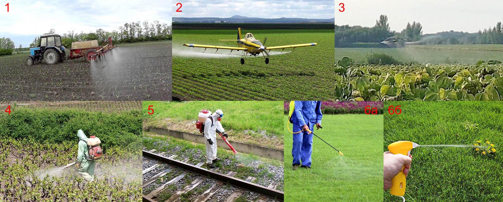 Основные области применения гербицидов