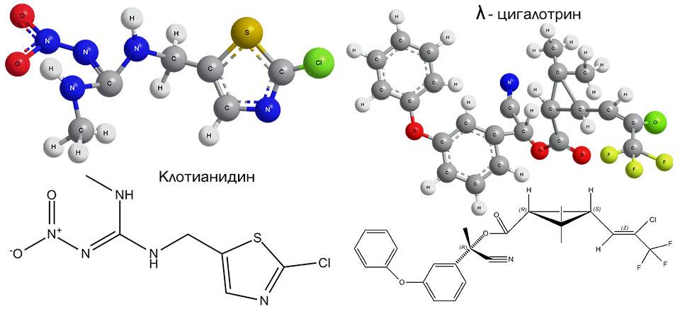 Химические структурные формулы и строение молекул клотианидина и λ-цигалотрина