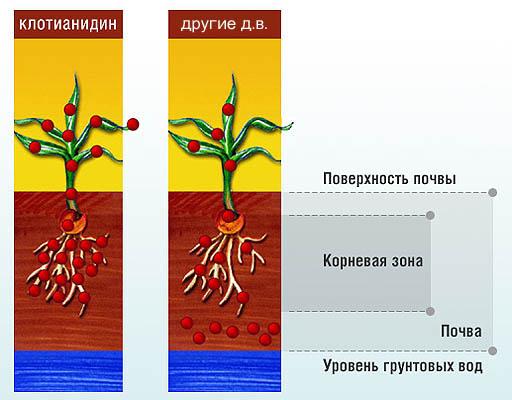 Поведение клотианидина в почве сравнительно с другими пестицидами.